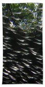 Schooling Fish Under Red Mangrove  Beach Towel