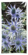 Sea Holly Beach Towel