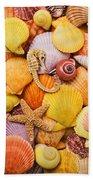 Sea Horse Starfish And Seashells  Beach Towel
