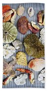 Sea Treasures Beach Towel