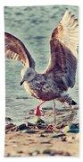 Seagull Flaps Beach Towel