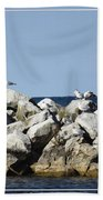 Seaguls On Boulders In Lake Erie Beach Towel