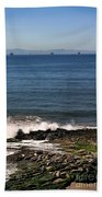 Seals Beach Towel