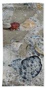 Seashells In The Surf Beach Towel
