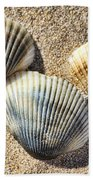 Seashells V2 Beach Towel