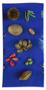 Seed Diversity, Barro Colorado Island Beach Towel