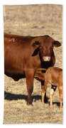 Senopol Surrogate With Calf Beach Towel by Science Source