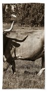 Sepia Longhorn Cow Beach Towel