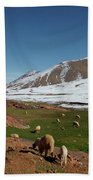 Sheep In The Atlas Mountains 02 Beach Towel
