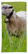 Sheep With A Bell Beach Towel