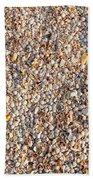 Shells Shells Shells Beach Towel
