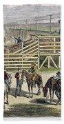 Shipping Cattle, 1877 Beach Towel