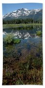 Shore Reflections Of Mt Tallac Beach Towel