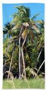 Shy Palms Beach Towel