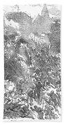 Siege Of Waterford, 1169 Beach Towel