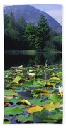 Silent Valley, Mourne Mountains Beach Towel