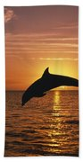 Silhouette Of Leaping Bottlenose Beach Towel