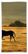 Silhouetted Horses Running Beach Towel