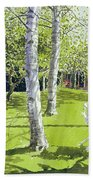 Silver Birches Beach Towel by Lucy Willis