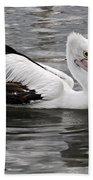 Single Australian Pelican Beach Towel