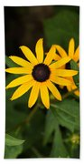 Single Daisy Beach Towel