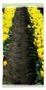Skagit Valley Tulips 2 Beach Towel