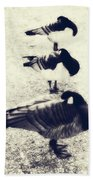 Sleeping Ducks Beach Towel by Joana Kruse