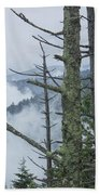 Smokey Mountain Forest No.612 Beach Towel