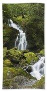 Smoky Mountain Waterfall - Mouse Creek Falls Beach Towel