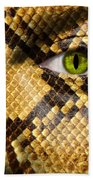 Snake Eye Beach Towel by Semmick Photo