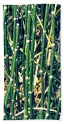 Snake Grass On The Beach Beach Towel
