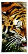 Snarling Tiger Beach Sheet