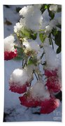 Snow Covered Roses Beach Towel