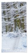Snow Magic Beach Towel