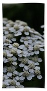 Snow Sport Yarrow Beach Towel
