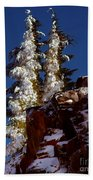 Snow Tipped Trees  Beach Towel