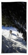 Snow Trail-under The Boughs Beach Towel