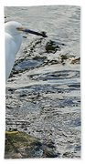 Snowy Egret 2 Beach Towel