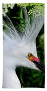 Snowy Egret With Breeding Plumage Beach Sheet