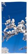 Snowy Trees And Blue Sky Beach Towel