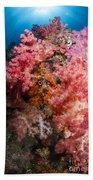 Soft Coral In Raja Ampat, Indonesia Beach Towel