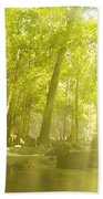 Soothing Rays Beach Towel