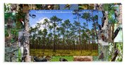 Southeastern Pine Forest Wildlife Poster Beach Towel