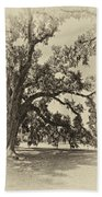 Southern Comfort Sepia Beach Towel