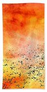 Space013 Beach Towel