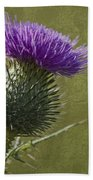 Spear Thistle With Texture Beach Towel