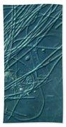 Sphaerotilus Bacteria Beach Towel