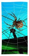 Spider On The Olympic Roof Beach Towel