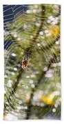 Spider On Web Beach Towel