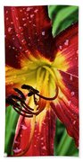 Spiderman The Day Lily Beach Towel